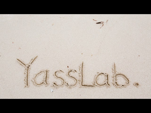 Daily Life in YassLab Inc.